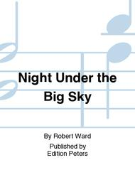 Night Under the Big Sky