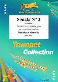Sonata Ndeg 3 in A minor