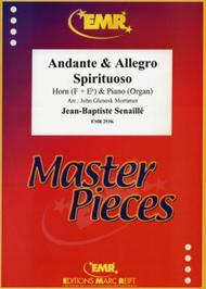 Andante & Allegro Spirituoso