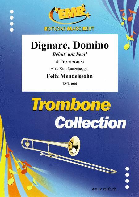 Dignare, Domino