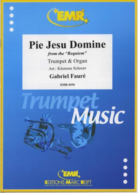 Pie Jesu Domine (aus Requiem)