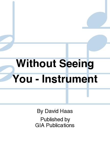 Without Seeing You - Instrument