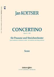 Concertino op. 91