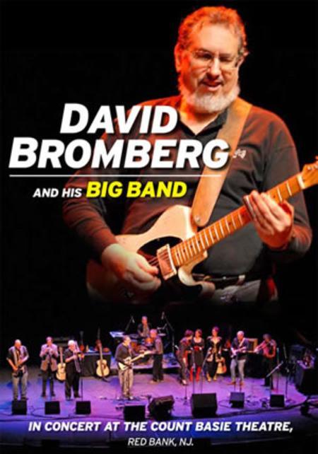 David Bromberg and His Big Band