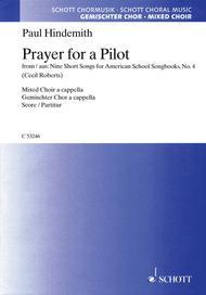Prayer for a Pilot