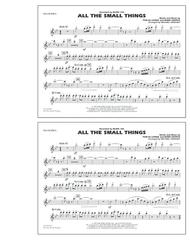 All The Small Things - Flute/Piccolo