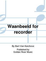 Waanbeeld for recorder