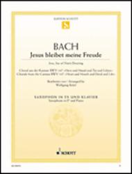 Jesu, Joy of Man's Desiring BWV 147