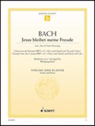Jesu, Joy of Man's Desiring BWV 147