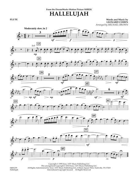 Download Hallelujah Flute Sheet Music By Leonard Cohen Sheet