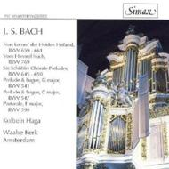 Organ Music - BWV 541, 547, 59