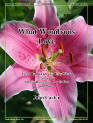 What Wondrous Love