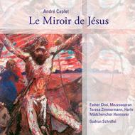 Le Miroir De Jesus