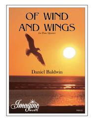 Of Wind and Wings