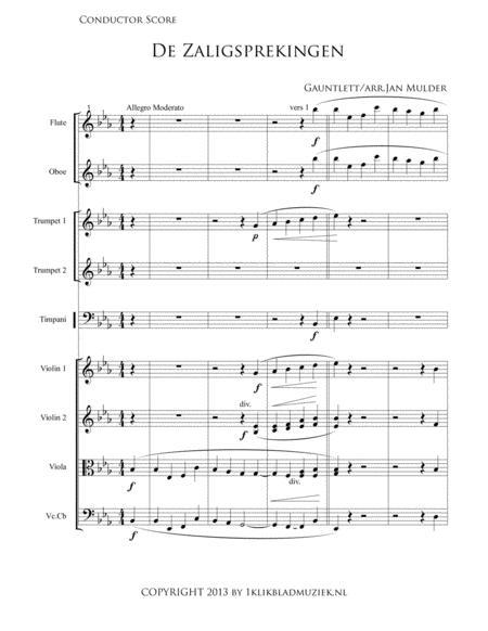 De Zaligsprekingen - Mattheus 5 - Flute, Oboe, Violin Ensemble And Timpani (Accompaniment For Mixed Choir)