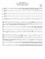 Coro: Sehet, welch eine Liebe hat uns der Vater erzeiget from Cantata BWV 64 (arrangement for 5 recorders)