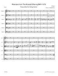 Bach: The Musical Offering (BWV 1079) No. 5 Ricercare a 6 arr. for String Sextet