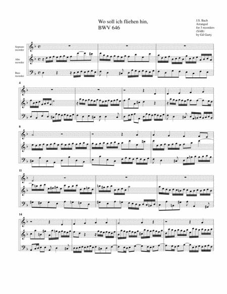 Wo soll ich fliehen hin BWV 646 for organ from Schuebler Chorales (arrangement for 3 recorders)