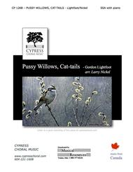 Pussy Willows and Cat-tails
