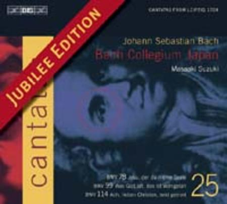 Volume 25: Cantatas BWV 78, 99, 11