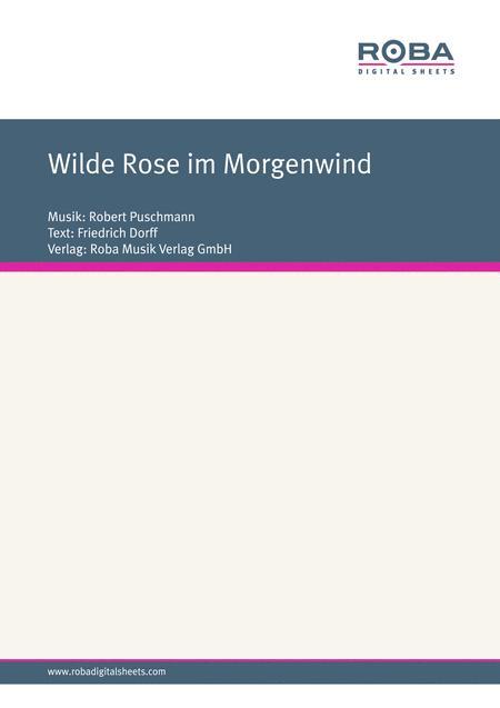 Wilde Rose im Morgenwind