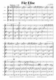 For Elise - Ludwig van Beethoven - Wind Quintet