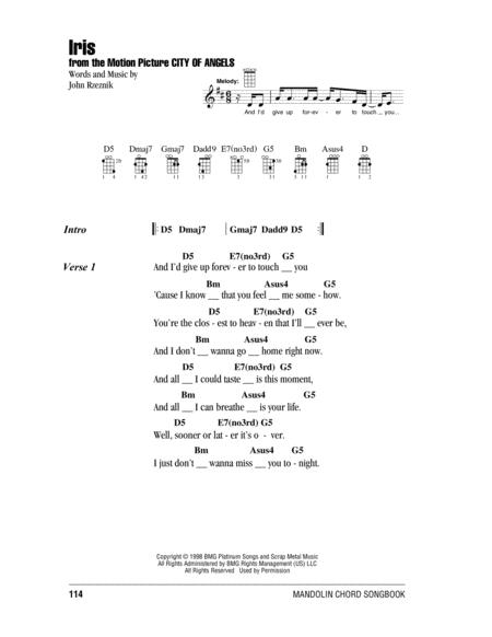 Download Iris Sheet Music By The Goo Goo Dolls Sheet Music Plus