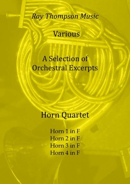 A Selection of Orchestral Excerpts arranged for horn quartet - horn quartet