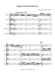 The Flight of the Bumblebee - arranged for String Ensemble/Orchestra/Quintet by Tomoya Aomori - score and parts