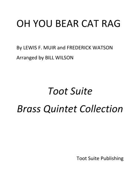 Oh You Bear Cat Rag