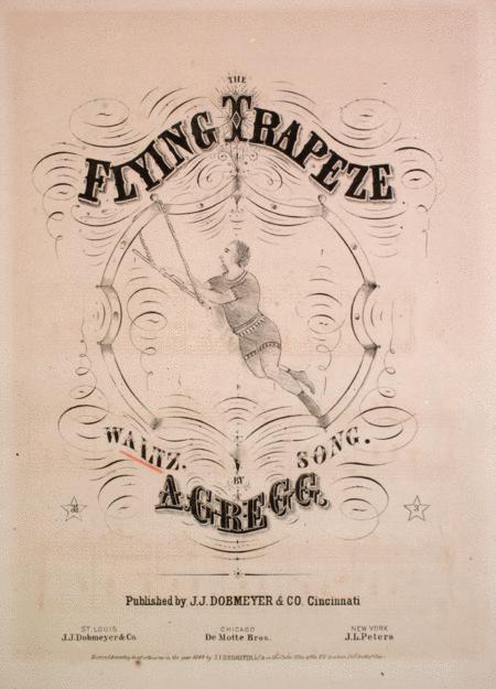 Flying trapeze walt