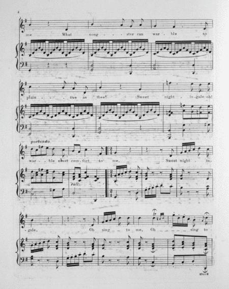 Sweet Nightingale. Song By F. Boscovitch - Digital Sheet