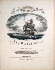 The Bird at Sea