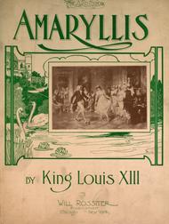 amaryllis louis xiii