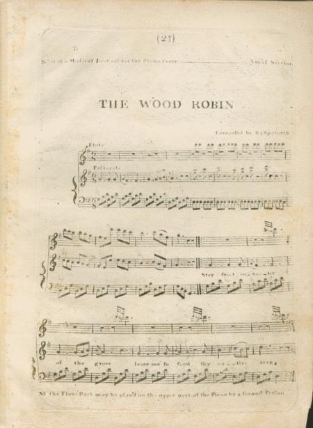 The Wood Robin