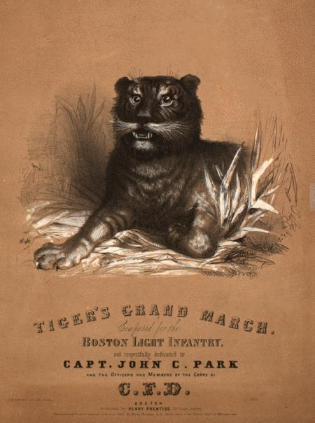 Tiger's Grand March