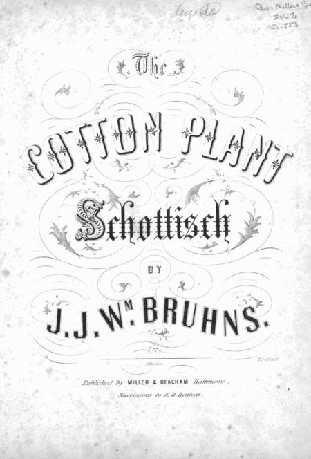 The Cotton Plant Schottisch