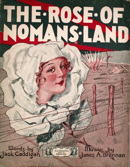 The Rose of No Man's Land