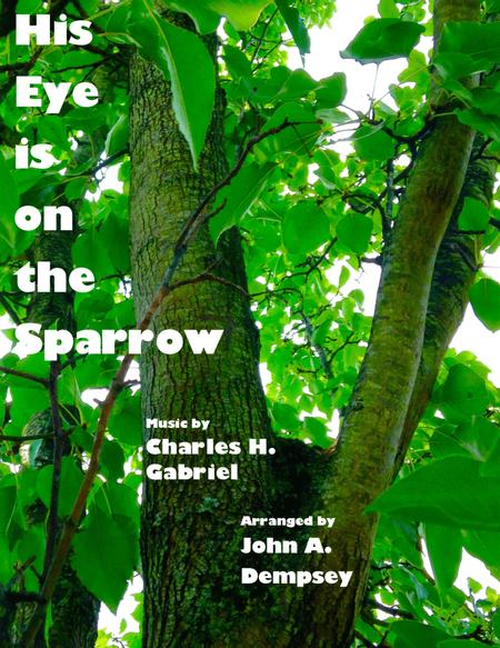 His Eye Is on the Sparrow ( Piano Solo)