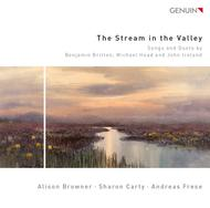 Stream of the Valley