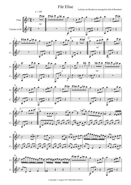 Fur Elise for Flute and Clarinet Duet