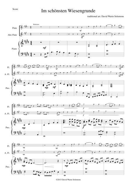 Im schönsten Wiesengrunde for flute, alto flute and piano