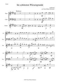 Im schönsten Wiesengrunde for flute, cello and guitar