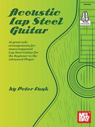 Acoustic Lap Steel Guitar