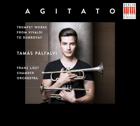 Tamas Palfalvi - Agitato