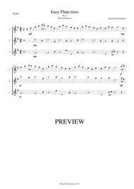 The Ash Grove (Llwyn Onn) for flute trio