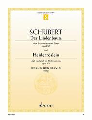 Der Lindenbaum, Op. 89/5 D 911/5 / Heidenroslein, Op. 3/3 D 257