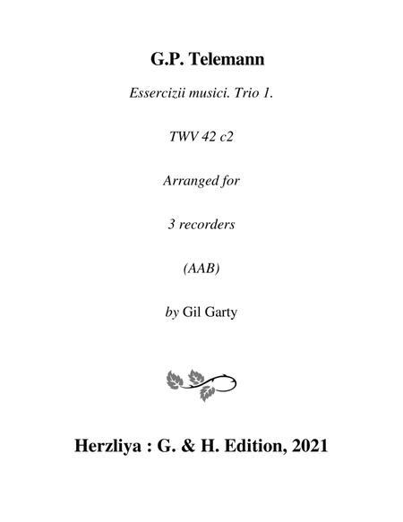 Trio sonata TWV 42:c2 (Essercizii musici, trio no.1) (arrangement for 3 recorders)