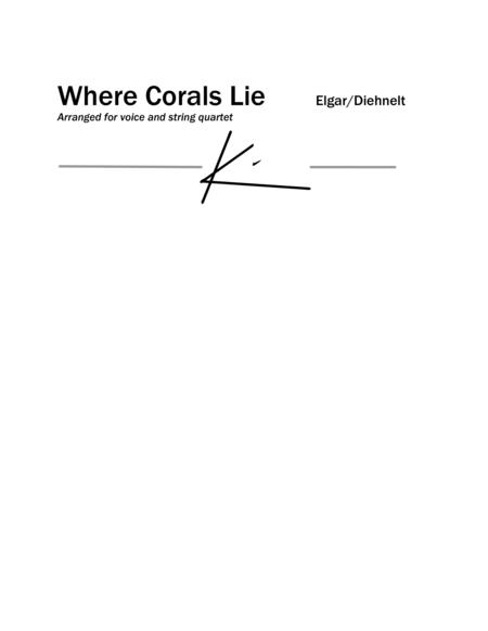 Elgar: Where Corals Lie from Sea Pictures