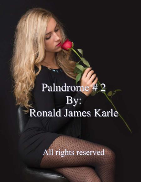 Palindrome #2